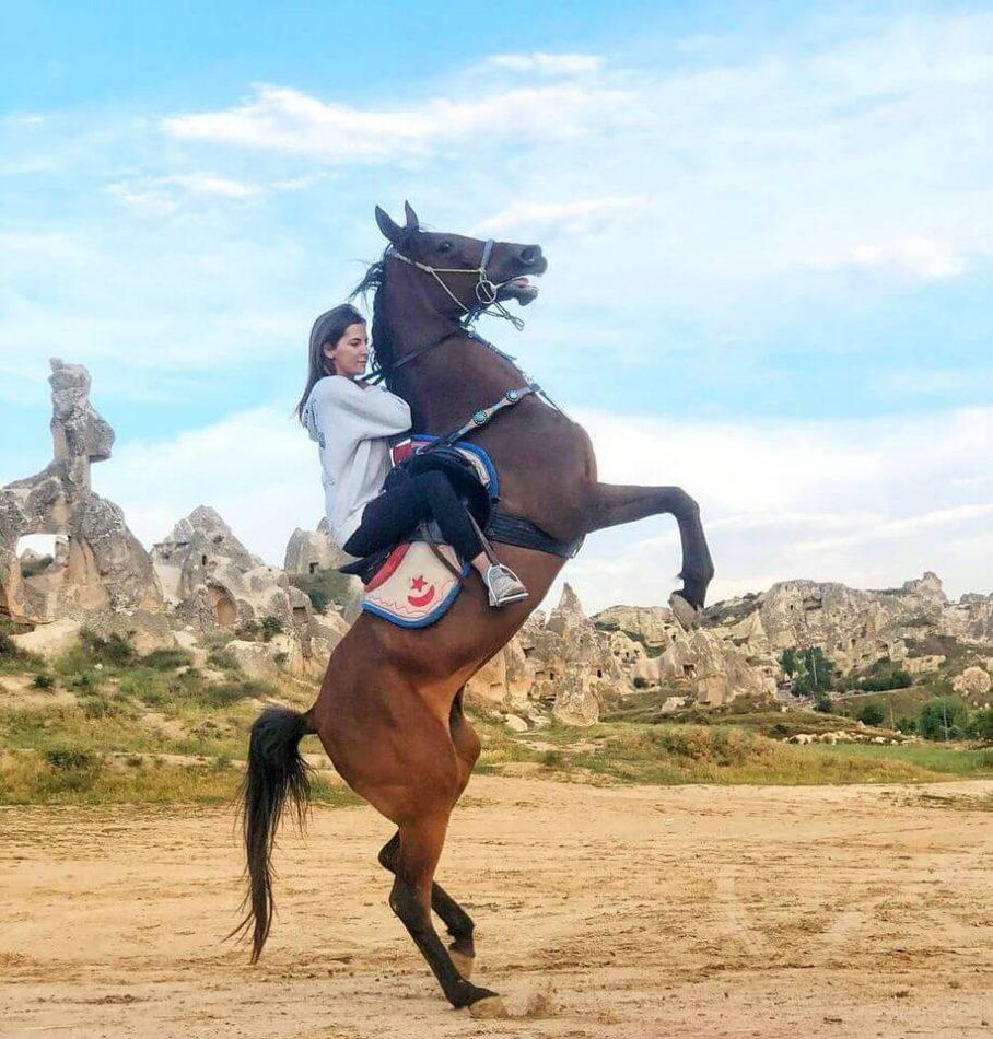 Dalton Brothers Horse Ranch