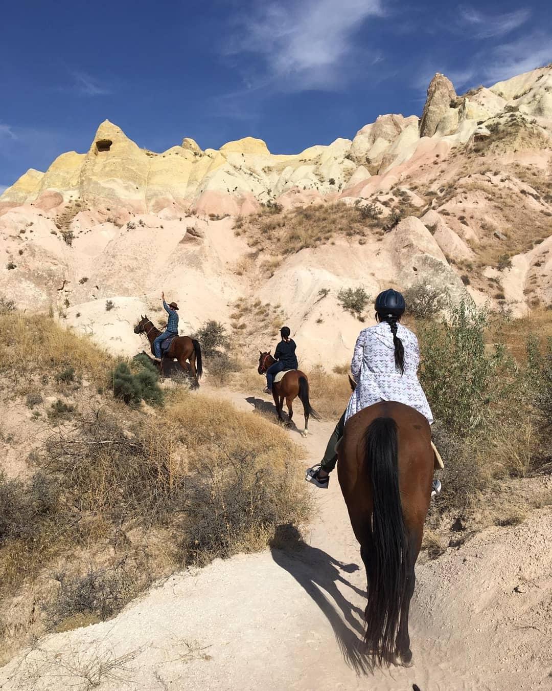 Lucky Horse Ranch